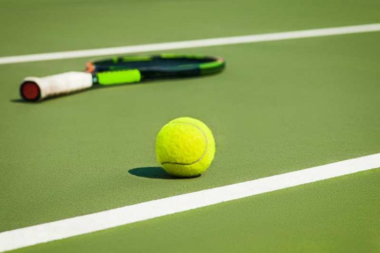 pelotas de tenis dunlop